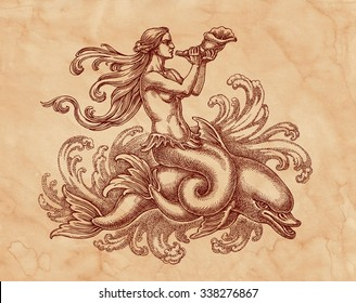 Original ink and pen drawing, mermaid with a dolphin on brown old paper. Allegory of the sea.