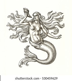 Original ink and pen drawing, mermaid on white background. Allegory of the sea.