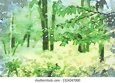 An original photograph of the summer woods in the Poconos transformed into a digital watercolor painting
