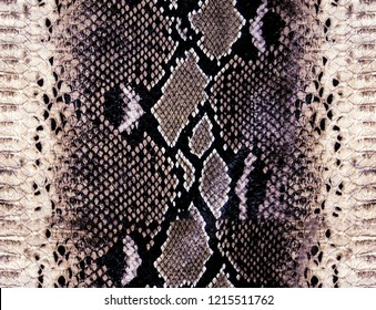 original snake pattern background