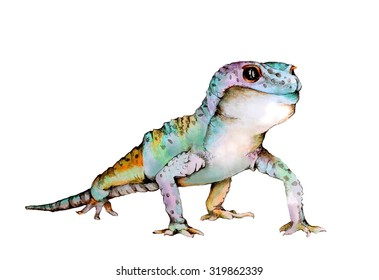 Original Watercolor Illustration of a Colorful Gecko