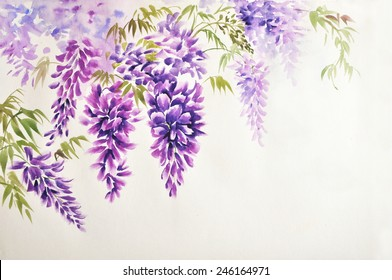 Original watercolor painting of beautiful wisteria branches in blossom
