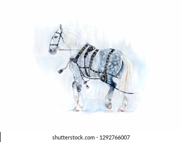 orlov trotter in traditional harness watercolor painting
