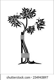 Orthopedic surgery Tree