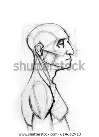 outline drawing sketch side profile human stock illustration