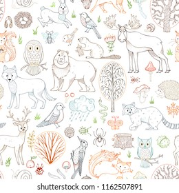 Outlined woodland seamless pattern. Wild animals, birds and insects. Autumn trees, mushrooms and leaves. Fox, wolf, deer, moose, bear, hare, squirrel, racoon, owl, bee, beaver, snail and snake.