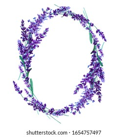 Oval wreath of lavender flowers on a white background. Hand drawn watercolor illustration.