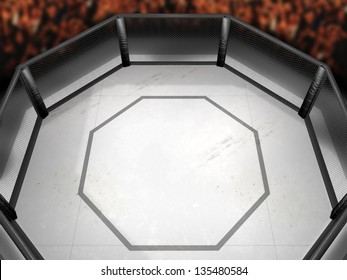 Overhead view of mixed martial arts fighting arena.