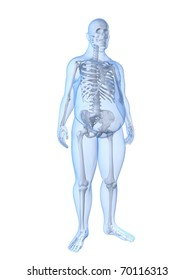 overweight male - skeleton
