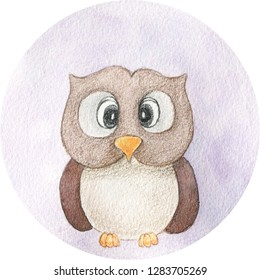 Owl cartoon hand drawn illustration. Watercolor and pencils art