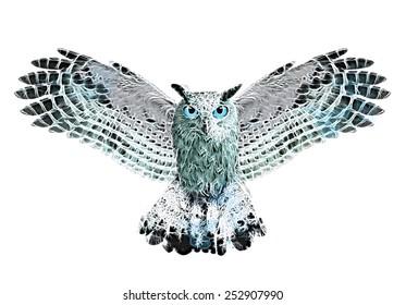 owl illustration / owl watercolor-like graphics / T-shirt Graphics