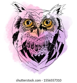 Owl portrait in sketch light graphic style, black hand drawing with bright watercolor spots in background. Hand-drawn wild forest bird illustration for posters, postcards, bag and t-shirt design.