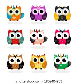 Owls set on white background. Birds set in flat style. Colorful cartoon funny.