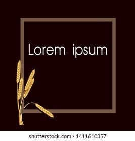 Paddy rice malt barley wheat. Square frame border. Lorem ipsum concept design.
