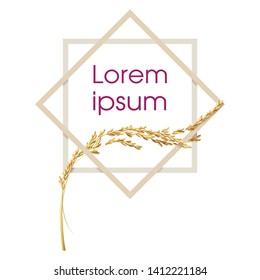 Paddy rice malt barley wheat oats. Double square frame border shape. Lorem ipsum logo label concept idea