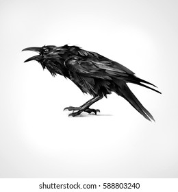 painted black raven sitting isolated