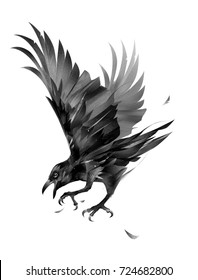 painted crow attacking a bird on a white background