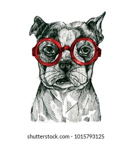 A painted dog with glasses. Prints for clothes