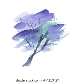 painted Jacaranda tree blossom. watercolor hand drawn illustration