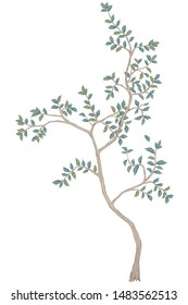 Painted tree without fruit on white background. Chinoiserie.