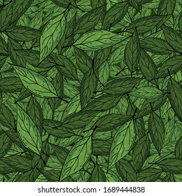 Painting of an abstract exotic plant. Wallpaper with green leaves. Tropical pattern, leaves seamless floral background illustration
