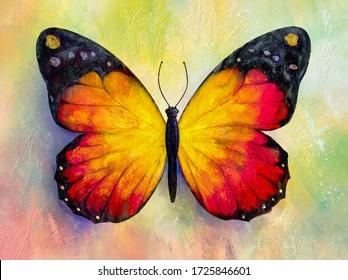 Painting of bright butterfly over grunge background