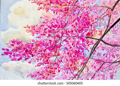 Painting  landscape watercolor original  colorful of wild  himalayan cherry with beautyful  blue sky and cloud background