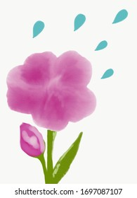Painting a pink flower on a white background,(photo illustration.)