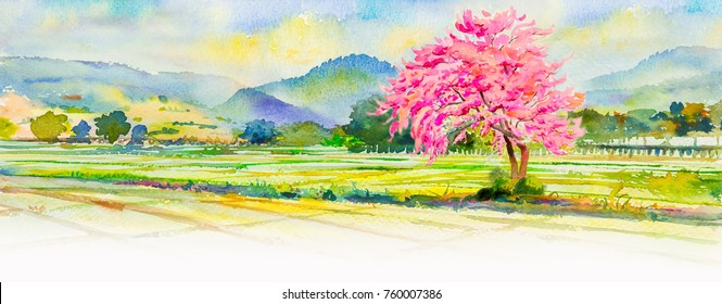 Painting watercolor landscape pink color of flowers with bright alone tree on cornfield in the spring season. Hand painted, mountain, blue sky, cloud background, beauty nature, winter season, panorama