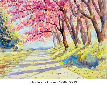 Painting watercolor landscape pink red color of Wild himalayan cherry roadside in the morning with vintage emotion sky cloud background, Hand painted, beauty nature winter season landmark in Thailand.