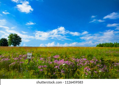 Painting of wild flowers in a prairie grassland with a birdhouse and bluebird.