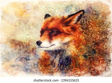 Painting of wild fox on paper. Ornamental background in border.