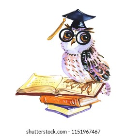 Painting wise owl with books. Watercolor education illustration on white background. Hand drawn back ti school, university symbol
