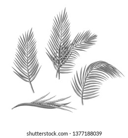 Palm Leaves Pencil Illustration Isolated on White