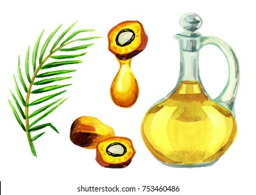 Palm oil set. Watercolor illustration