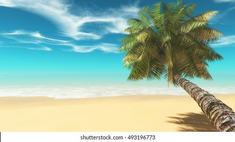 A palm on the tropical beach. This is a 3d render illustration