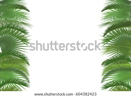 Palm Plant Tree Leaves Background Template Stock Illustration