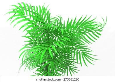 palm plants - Shutterstock ID 273661220