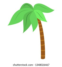 Palm tree icon. Isometric of palm tree icon for web design isolated on white background
