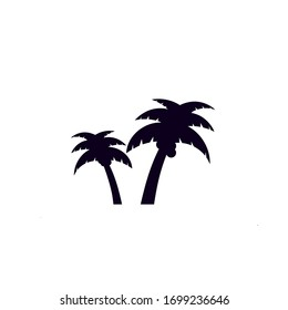 Palm tree icon on white background.