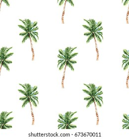 Palm tree seamless pattern. Hand drawn trees isolated on white