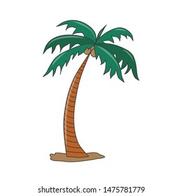 Palm trees in cartoon style isolated on white background Illustration