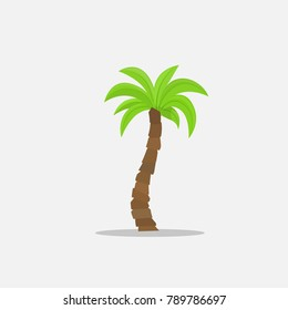 Palm trees in cartoon style isolated on white background Illustration. Tropical summer tree plant symbol on nature for your projects.
