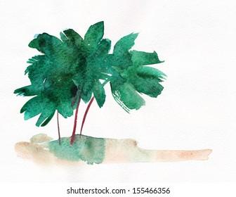 Palm trees and coastline