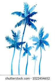 Palm trees. Hand drawn watercolor illustration.