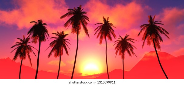 Palm trees at sunset, coconut palm trees against the sunset sky with clouds, palm trees dragging at sunrise, 3d rendering