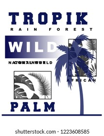tropıcal palm wild real tree word nature whater sea 72 backraund