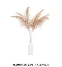 Pampas grass white vase on white background isolated. 3d rendering modern minimalistic pampa concept