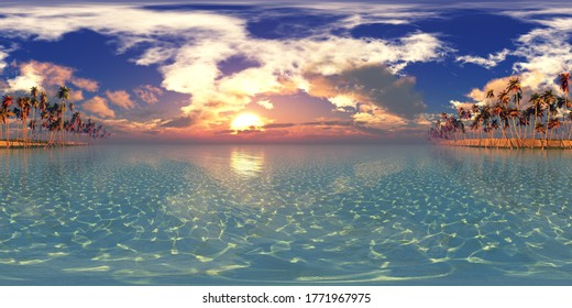 panorama of palm trees in a row at sunset. HDRI, environment map , Round panorama, spherical panorama, equidistant projection, panorama 360, seascape, 3d rendering.