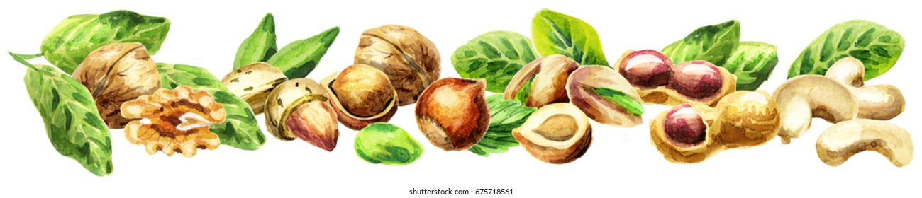 Panoramic image of nuts on the white background. Can be used for kitchen skinali